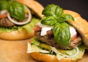 burger recipe diet salisbury low carb